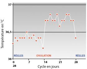 Graphique de température basale (TB) normale